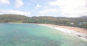 Hawaii strandShoreline stock video