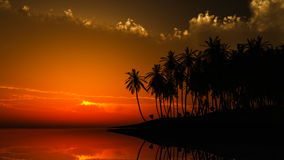 Hawaii sunset. CG recreation of a Hawaii beach sunset with palm groves silhouette and an amber sky royalty free stock photography