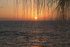 Hawaii Sunset Royalty Free Stock Photo