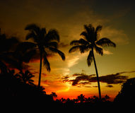 Hawaii Sunset Royalty Free Stock Images