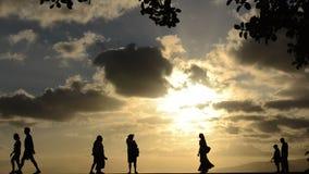 Hawaii Sunset stock video