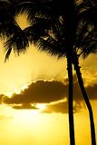 hawaii sunset zdjęcia stock
