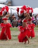 Hawaii-Tänzer - indischer Eingeborener des Festivals Stockbild