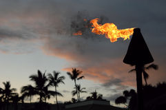 Hawaii Torch. Royalty Free Stock Images
