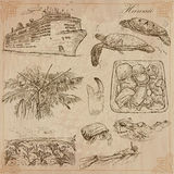 Hawaii - Travel. hand drawn vectors. Royalty Free Stock Images