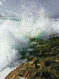 Hawaii-Ufer Stockfotografie