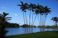 Hawaii, USA Stockfotos