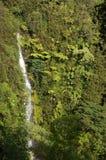 Hawaii, USA Lizenzfreie Stockfotografie
