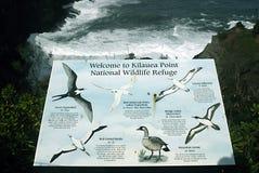 HAWAII_USA_Visitors an Kilauea-Bucht lizenzfreies stockfoto