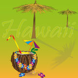 Hawaii vacation illustration Royalty Free Stock Photos