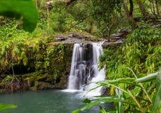 hawaii vattenfall Royaltyfri Fotografi