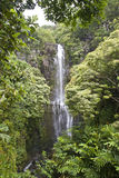 Hawaii vattenfall Fotografering för Bildbyråer