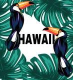 hawaii Vector el cartel con el ejemplo dibujado mano del tucán y de hojas de palma ilustración del vector