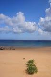 Hawaii-vulkanischer Strand Lizenzfreie Stockfotos