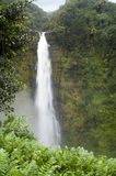 Hawaii-Wasserfall Stockfoto