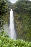 Hawaii-Wasserfall stockfoto