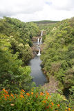 Hawaii-Wasserfall und Tal 1 stockfotos