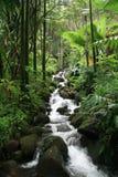 Hawaii waterfall stock images