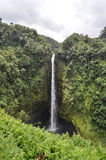 Hawaii waterfall; Akaka falls Stock Photos