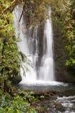 Hawaii waterfall Stock Photography