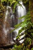 Hawaii waterfall Royalty Free Stock Photography