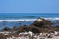 Hawaii ocean Stock Photo