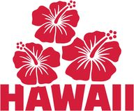 Hawaii word with hibiscus flowers. Vector Royalty Free Stock Image
