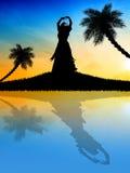 Hawaiiaan bij zonsondergang Royalty-vrije Stock Foto
