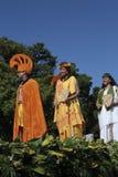 Hawaiiaans Koninklijk Kostuum Stock Foto