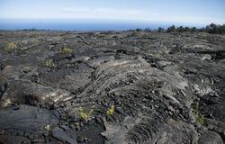 Hawaiiaans Lava Fields Royalty-vrije Stock Afbeelding