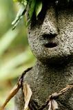 Hawaiiaans Standbeeld. stock fotografie