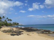 Hawaiiaans strand royalty-vrije stock afbeeldingen