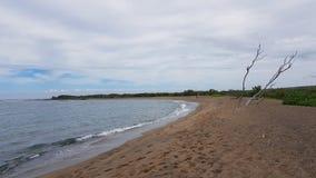 Hawaiiaans strand royalty-vrije stock foto