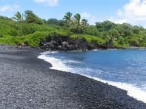 Hawaiiaans strand Stock Foto
