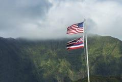 Hawaiiaanse en Amerikaanse Vlag Stock Foto