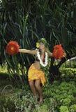 Hawaiiaanse hula Stock Foto