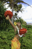 Hawaiiaanse hula Royalty-vrije Stock Fotografie