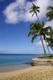 Hawaiiaanse kust, palmen en overzees royalty-vrije stock afbeelding