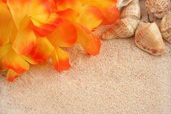 Hawaiiaanse strandachtergrond Stock Afbeeldingen