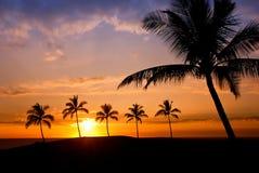 Hawaiiaanse Zonsondergang Royalty-vrije Stock Fotografie