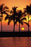 Hawaiiaanse Zonsondergang Royalty-vrije Stock Afbeeldingen