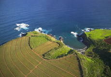 hawaiian земледелия прибрежный стоковая фотография rf
