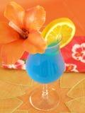 Hawaiian azul Imagem de Stock