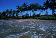 Hawaiian beach. Maui stock photos
