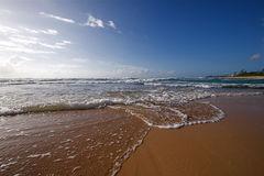 Hawaiian Beach Stock Image