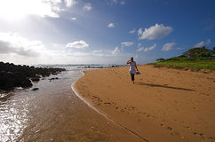 Hawaiian Beach Stock Photo
