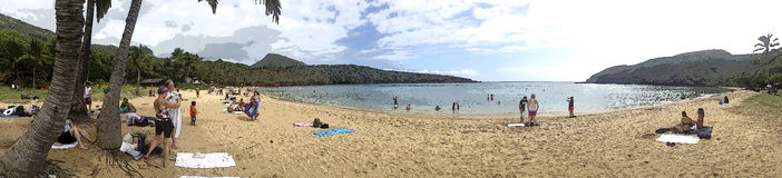 Hawaiian Beach. Artistic filter style - panoramic shot of hawaiian beach in Honolulu stock images
