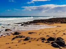 Hawaiian beach with blue waves. Hawaiian beach with blue ocean waves with blue sky and rocky beach royalty free stock image