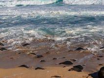 Hawaiian beach with blue waves. Hawaiian beach with blue ocean waves with blue sky and rocky beach royalty free stock photography
