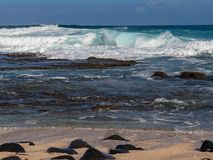 Hawaiian beach with blue waves. Hawaiian beach with blue ocean waves with blue sky and rocky beach stock image